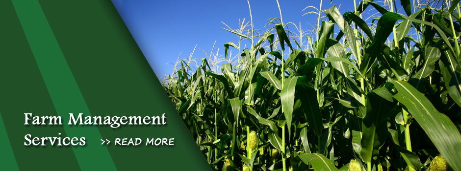 Farm Management | Illinois Agland Services